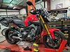 pic of 14 FZ09