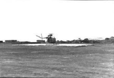 Pic of Choppers